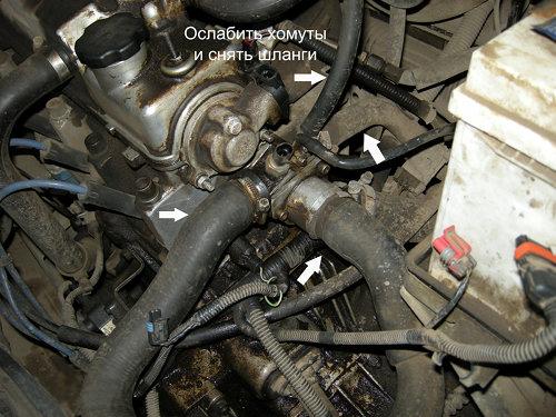 Замена термостата на газ-2217 с двигателем 4216 медицина гнёздная